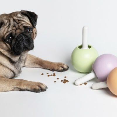 pidan®  Lollipop Dog Dispenser Toy