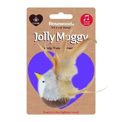 Jolly Moggy Catnip Tune Chaser Bird