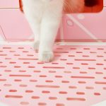 Vetreska® Fruity Cat Litter Box – Grapefruit