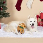 Fringe Studio Merry Chrismoose Plush Dog Toy