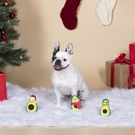 Fringe Studio Christmas Minis Holiday Avocados 3-Piece Plush Dog Toy Set