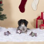 Fringe Studio Sweater Moose Plush Dog Toy 3-Pack