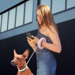 WAUDOG Retractable Leash