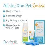 Oxyfresh Dental Kit